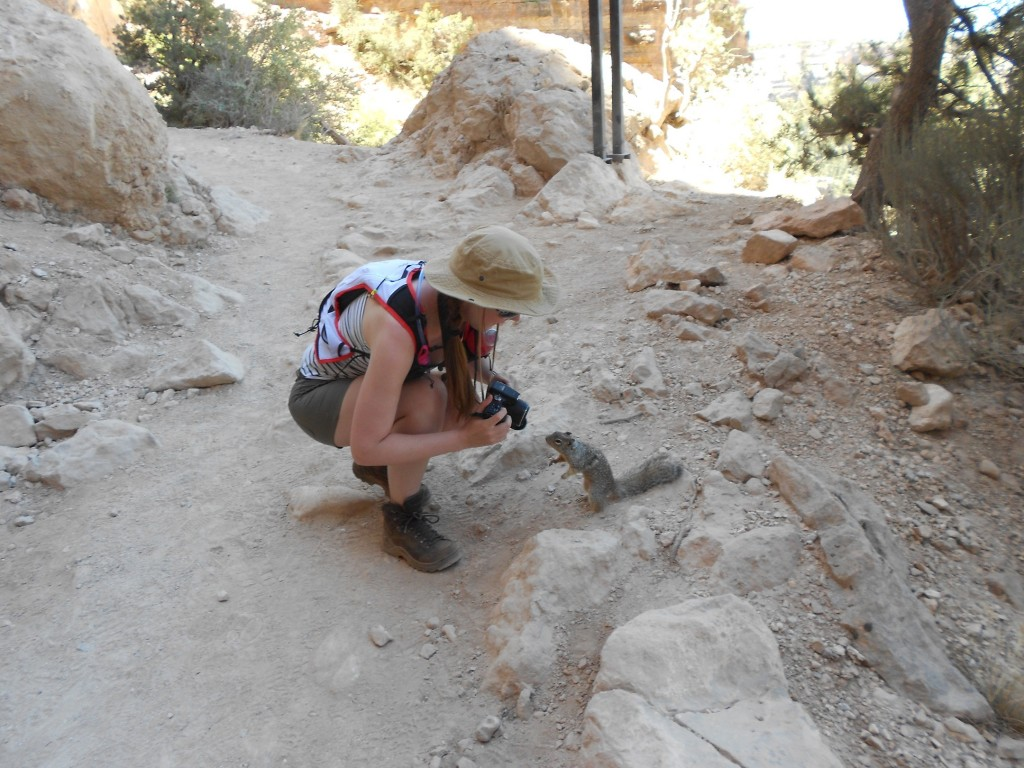 grand canyon kaibab trail